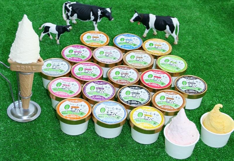 アイスクリーム 20個セット