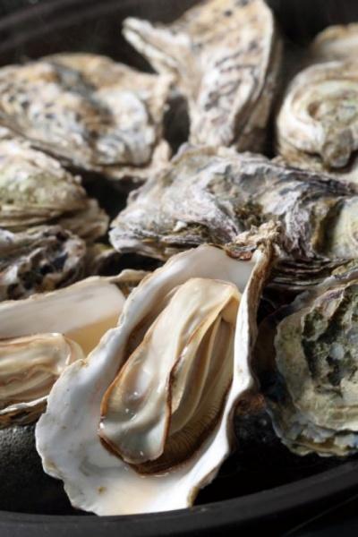 知内産殻付き牡蠣12個セット