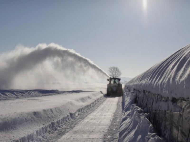 冬の吉田農場
