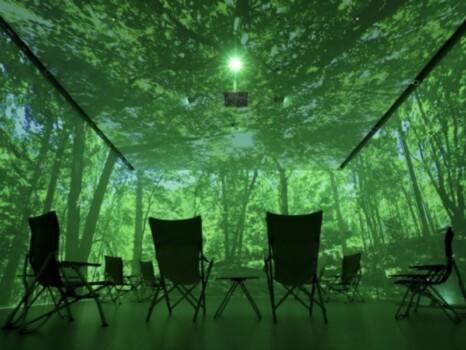 デジタル森林