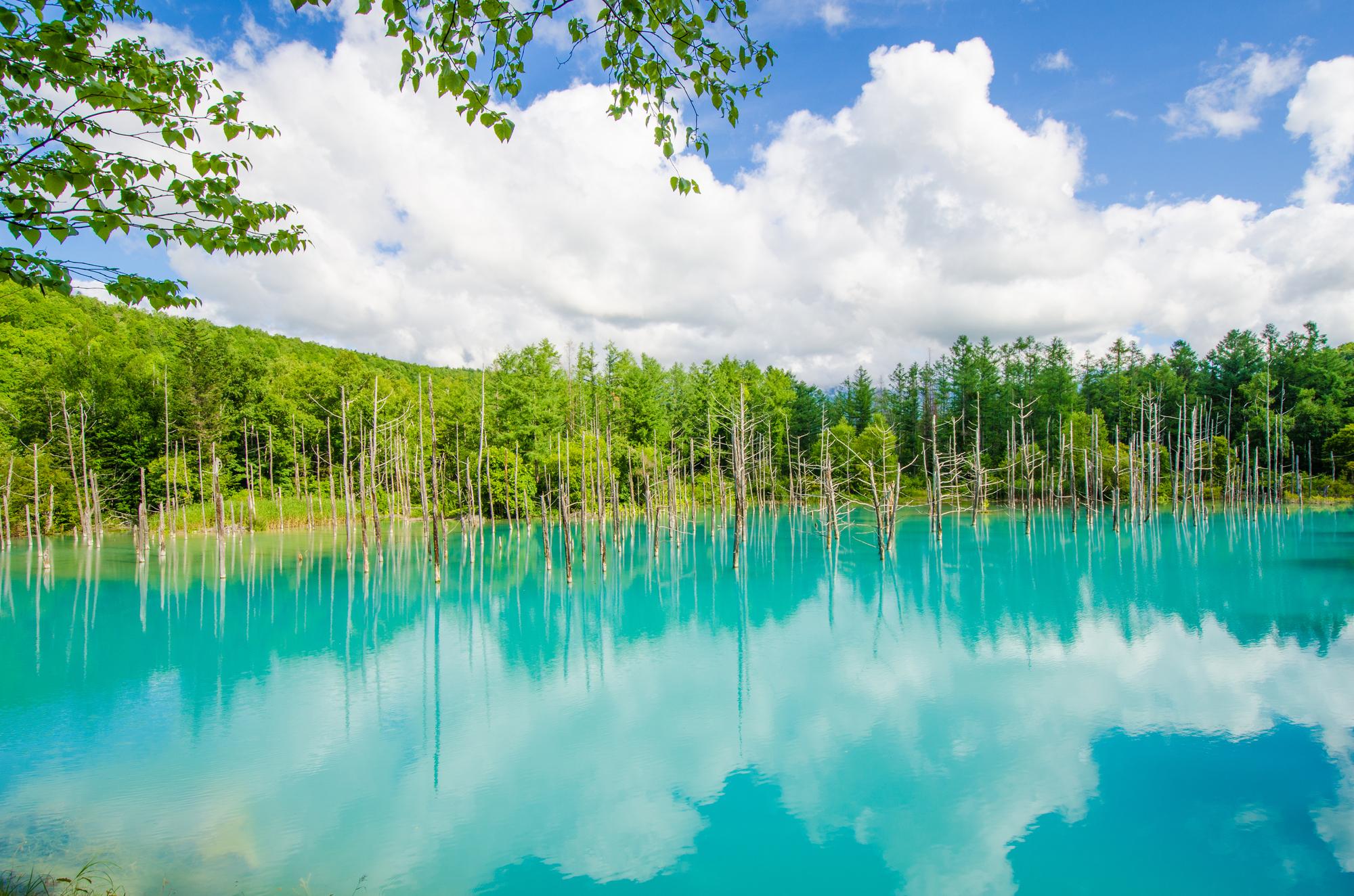 白かね青い池