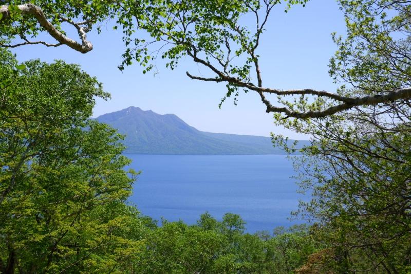 山中から見た支笏湖