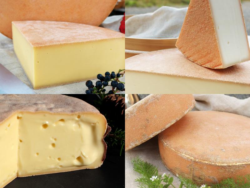 チーズ4種