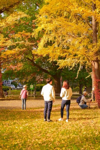 秋の北海道大学