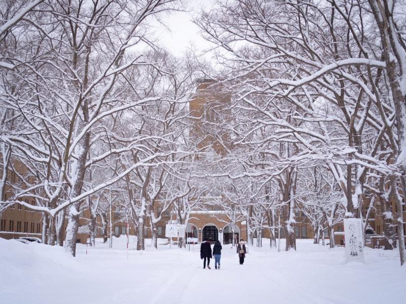 冬の北海道大学