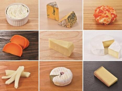 北海道地チーズ