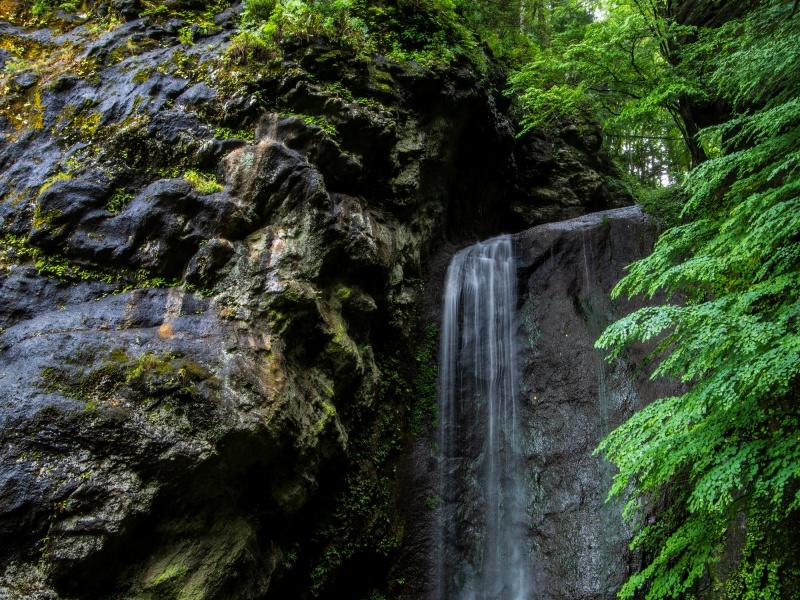 夏の置戸町鹿の子沢の糸ひき滝