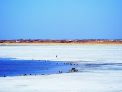 氷が解け始め湖面が広がる小清水町から見た春の濤沸湖 北海道