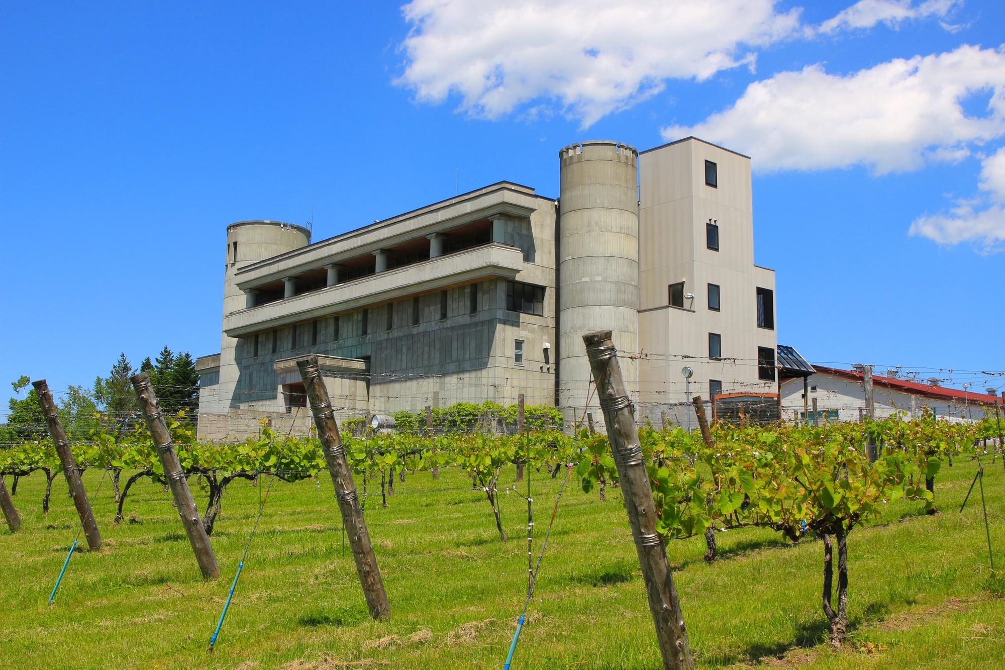 池田ワイン城とぶどう畑