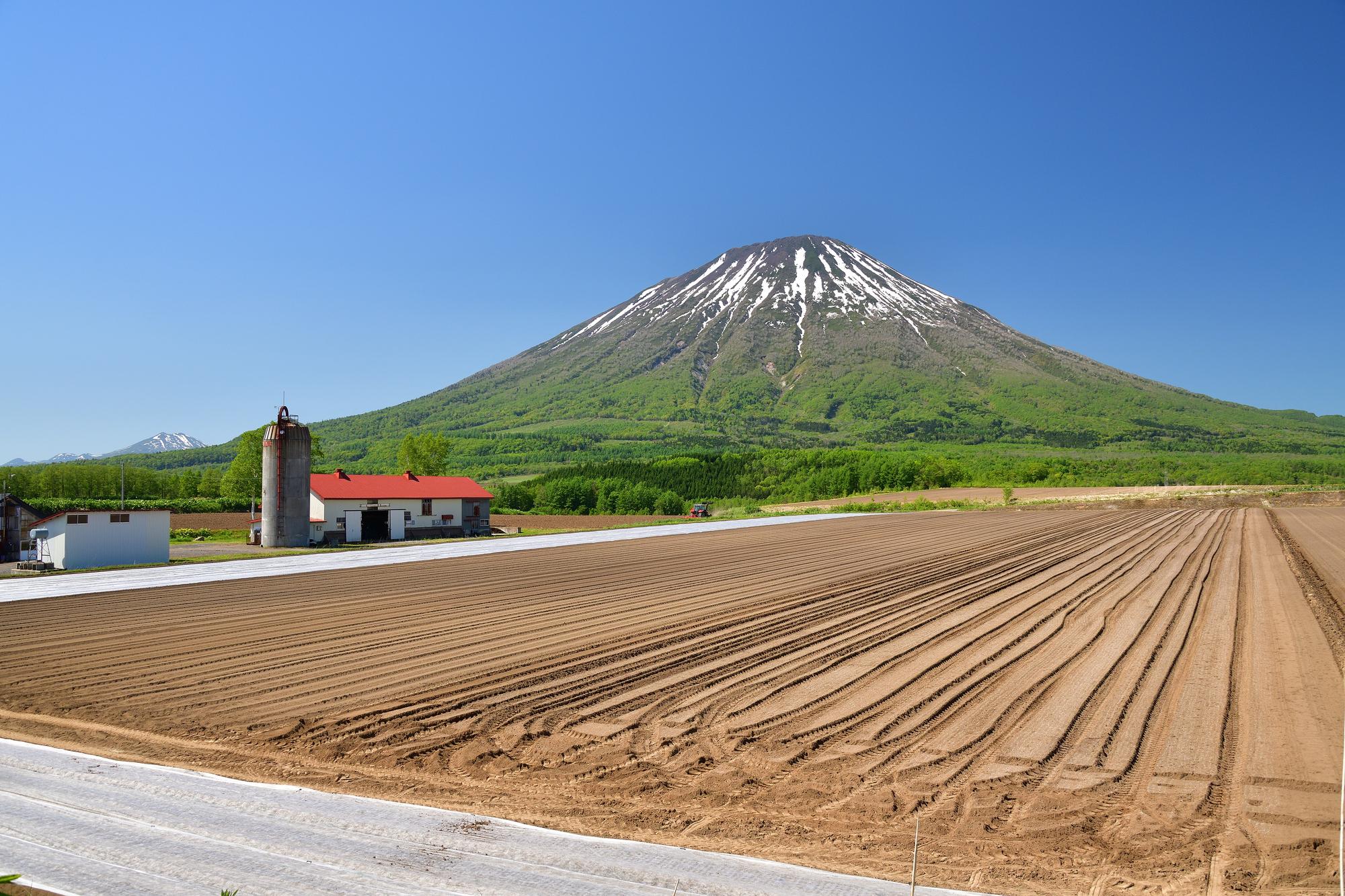 初夏の北海道留寿都村で残雪の羊蹄山と耕された畑の畝の風景を撮影