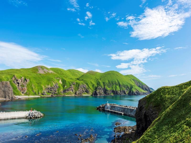 夏の礼文島と港