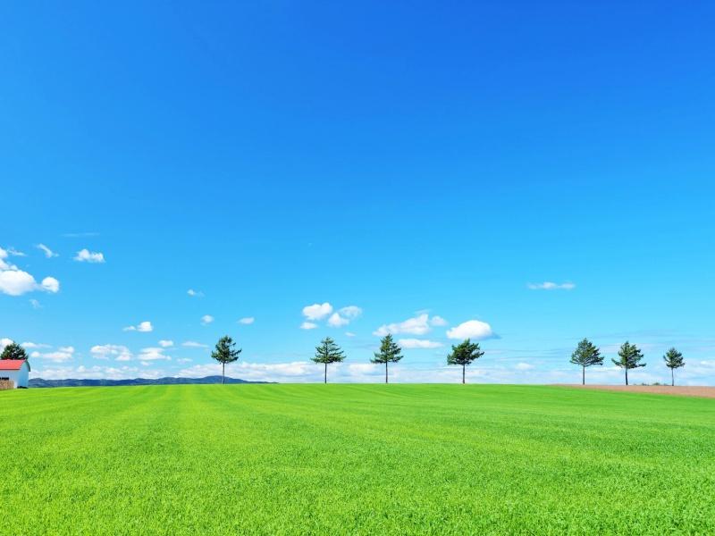 北海道 青空のメルヘンの丘