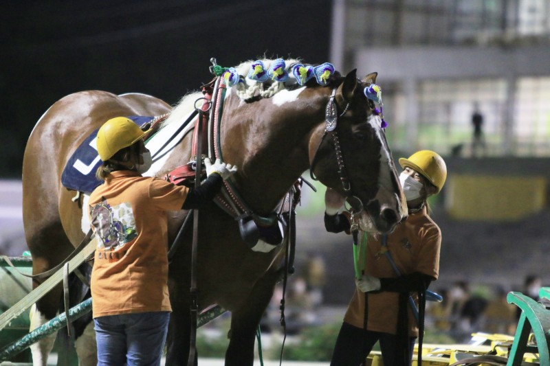 今井千尋厩務員(右)とブチオ(ばんえいグランプリ時)