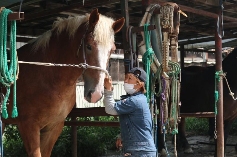 厩舎で馬の世話をする竹ケ原騎手