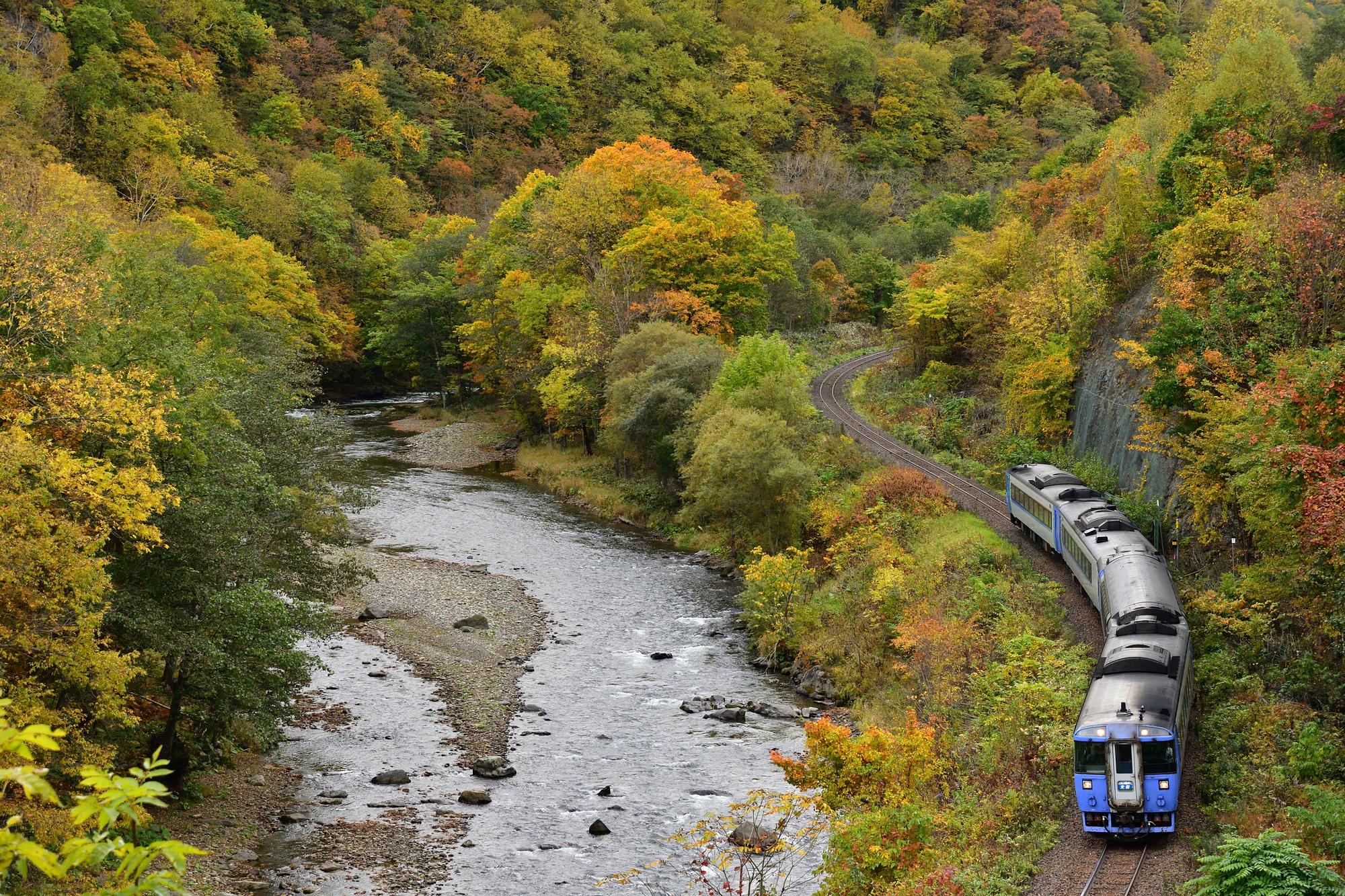 紅葉する白滝発祥の地を走る特急列車