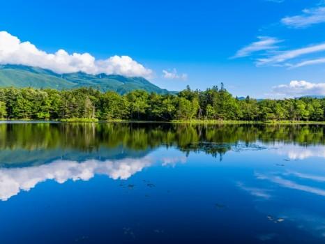 《北海道》夏の知床・知床連山と知床五湖《地上遊歩道》