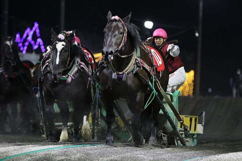 ナナカマド賞2021年優勝馬アバシリサクラ